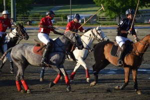 Great Meadow Polo