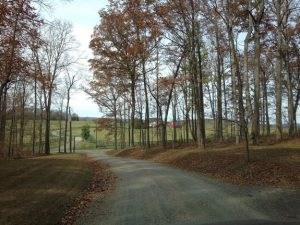 Hunt Country Accommodations Middleburg