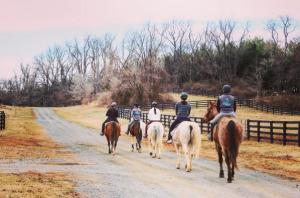 Salamander Resort and Spa horse trail ride Middleburg VA