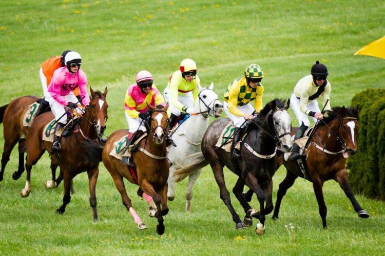 Middleburg Spring Races