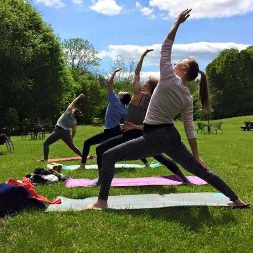 Three Fox Vineyards yoga