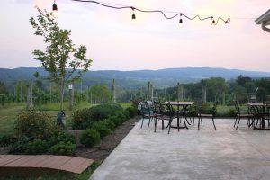 50 West Vineyards