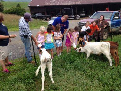 Ayrshire Farm Upperville Virginia