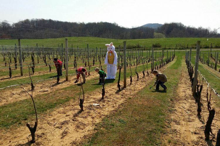 Easter Egg Roll Three Fox Vineyards