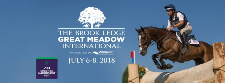 Great Meadow International