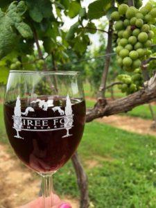 Three Fox Vineyards wine Delaplane VA